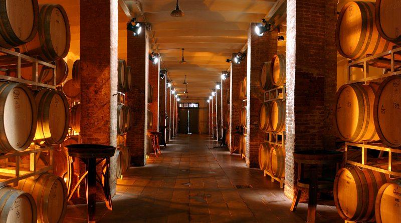 Le novità 2019 confermano l'eccellenza dei vini  Capezzana