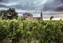 Castello di Semivicoli dei Masciarelli: tra degustazioni ed emozioni