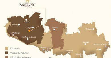 La casa vinicola Sartori tra passato e futuro