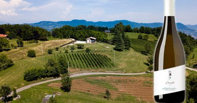 Terre di Cerealto presenta Cerealto 2018: un vino fermo prodotto da vitigni resistenti allevati a 700 m di quota