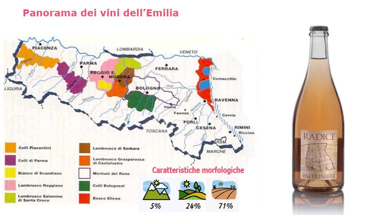I migliori vini dell'Emilia per l'AIS